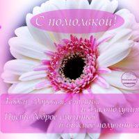 Помолвка, белый цветок, сердечки, открытка с пожеланиями