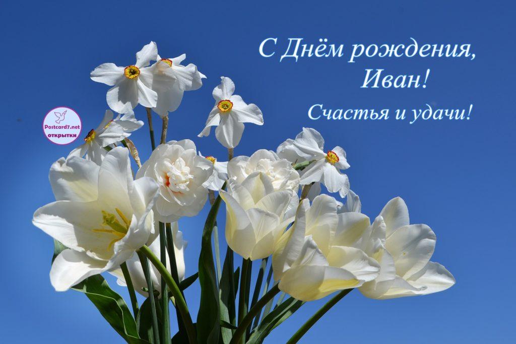 Букет нарциссов и белых тюльпанов, с Днём рождения Ивану