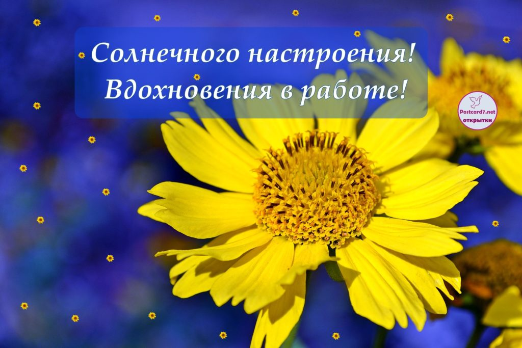 Вдохновения в работе, открытка с цветком
