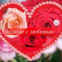 Володе с любовью, открытка с розами в сердечке