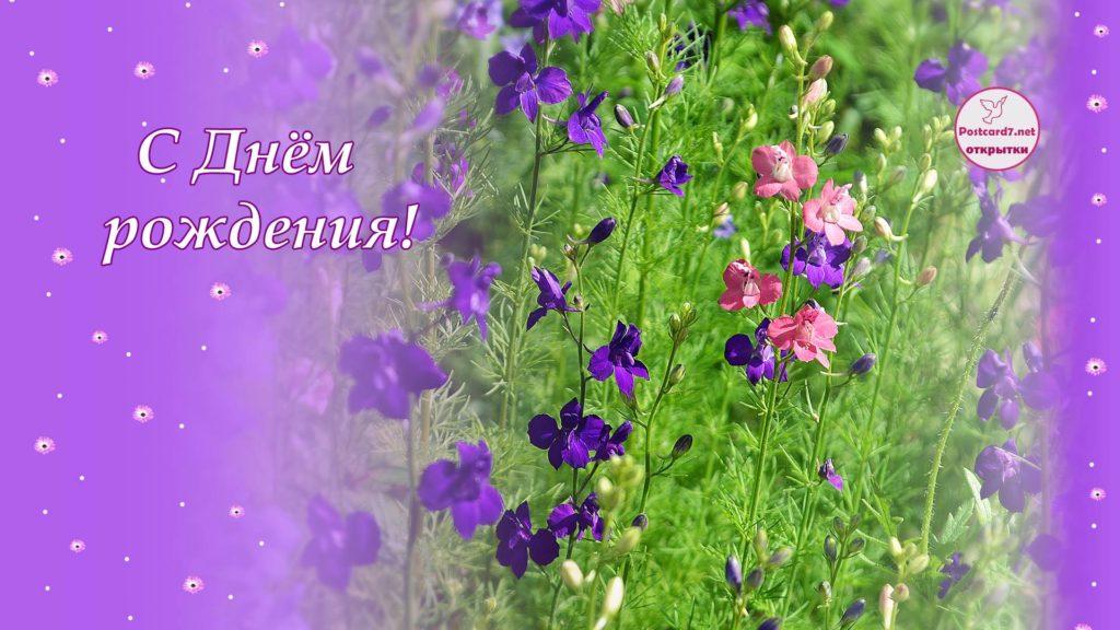 открытка, яркие цветочки, с днём рождения