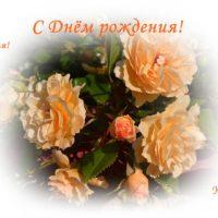 ДР открытка, чайные розы