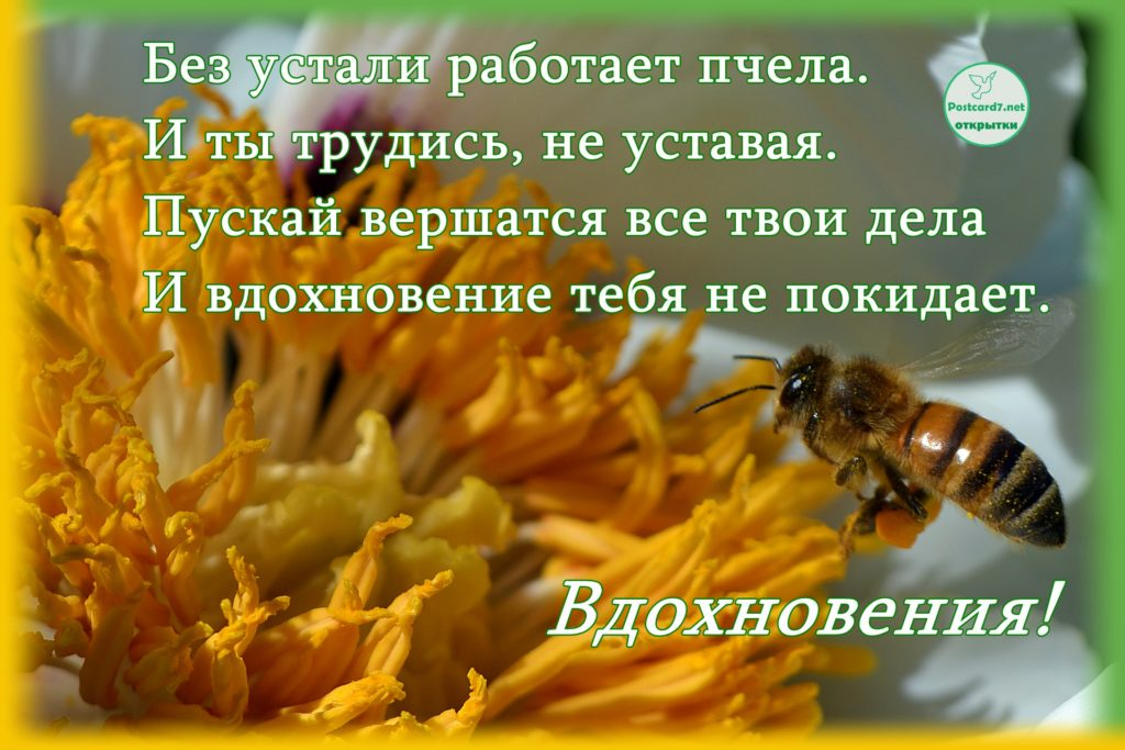 Желаю вдохновения, открытка с пчелой и стихами