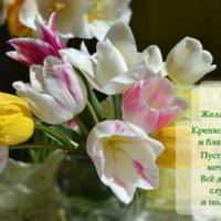 Желаю счастья, открытка с тюльпанами, пожелания в стихах
