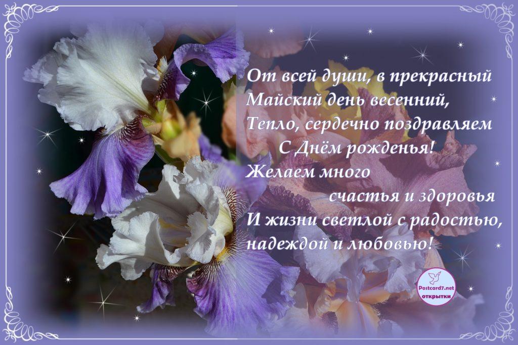 Ирисы, С Днём рождения, открытка