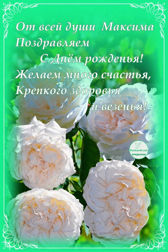 Открытка с розами, Максиму с Днём рожденья
