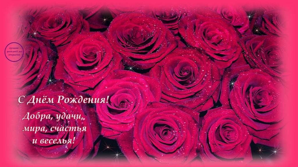 Днем рождения, открытки с днем рождения роза имя