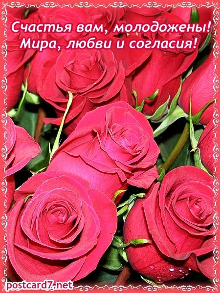 свадебная открытка, розы и пожелания
