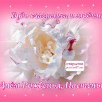 розовый пион, С Днём Рождения, Настеньке