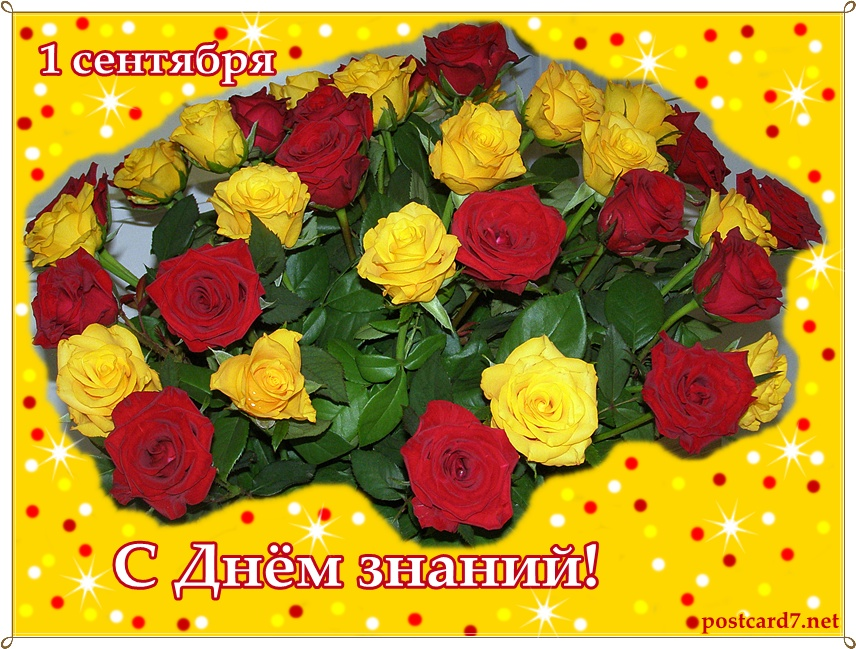 Открытка С Днем знаний, розы