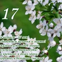 Открытка С 17-летием, стихи