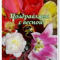 Поздравляем с весной, открытка, тюльпаны