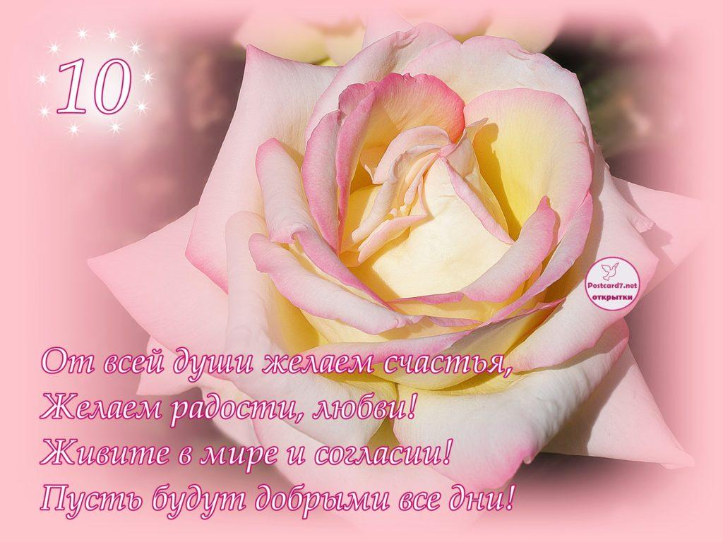 10-летие свадьбы, открытка с розой и стихи