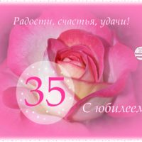 Роза в розовом обрамлении на весь экран. Открытка к 35-летию
