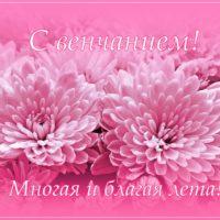 Открытка с нежно-розовыми хризантемами. С венчанием!