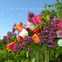 Счастья круглый год, открытка, тюльпаны с сиренью