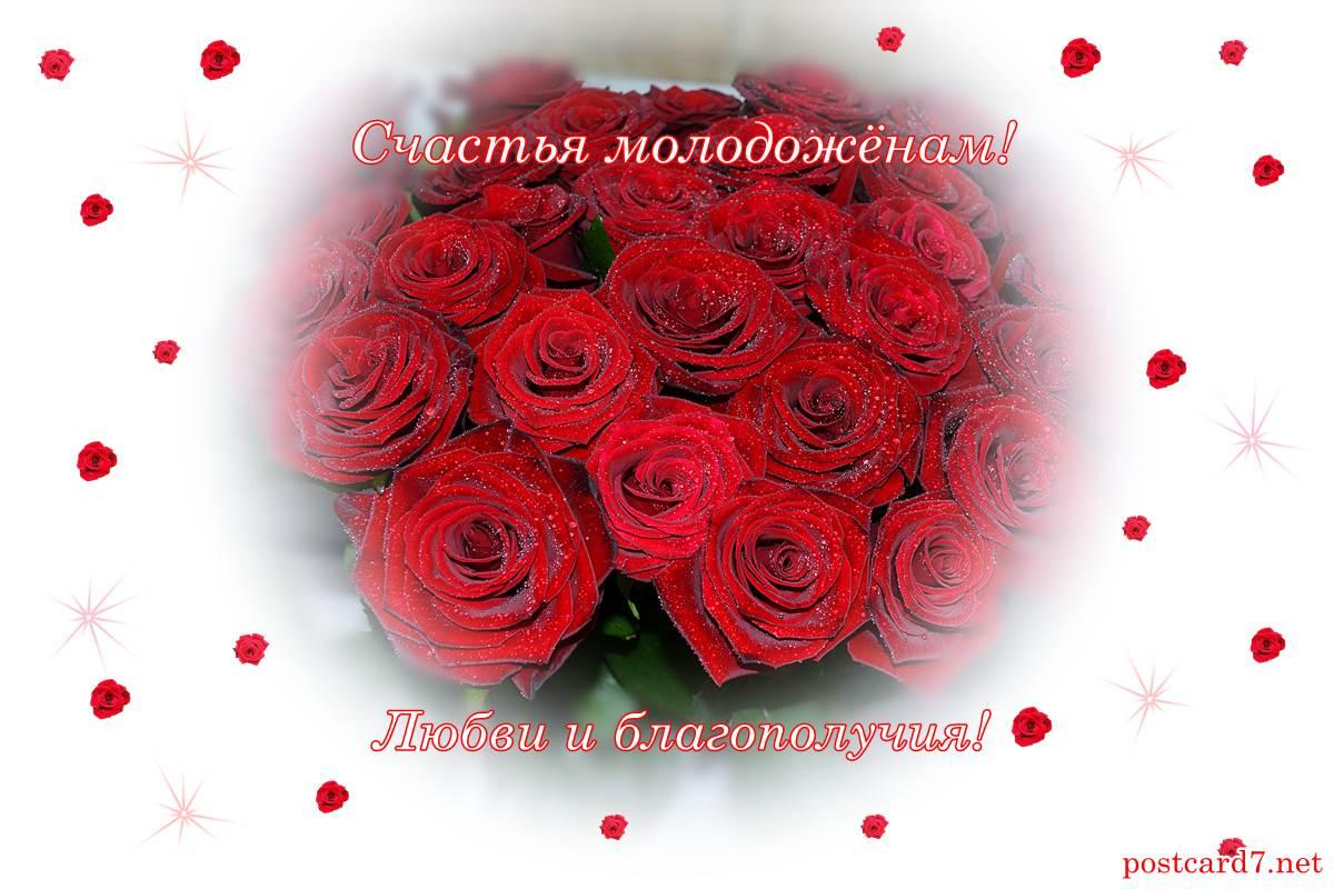 свадебная открытка, розы, пожелания молодожёнам