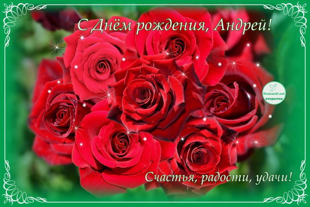 С Днём рождения, Андрей, открытка, красные розы