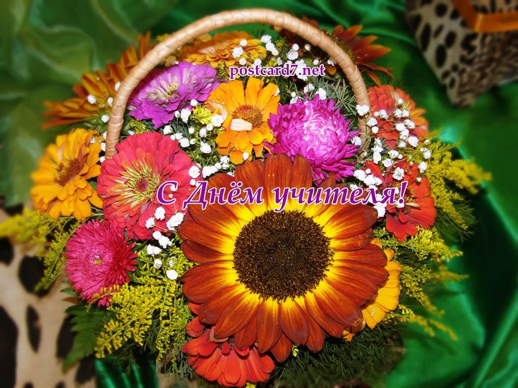 С Днем учителя, осенние цветы