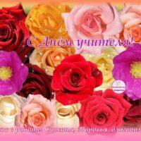 Открытка — 15 разноцветных роз — С Днём учителя!