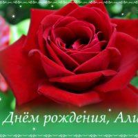 С Днём рождения, Алина, открытка, роза