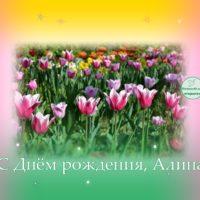 С Днём рождения, Алина, тюльпаны, открытка