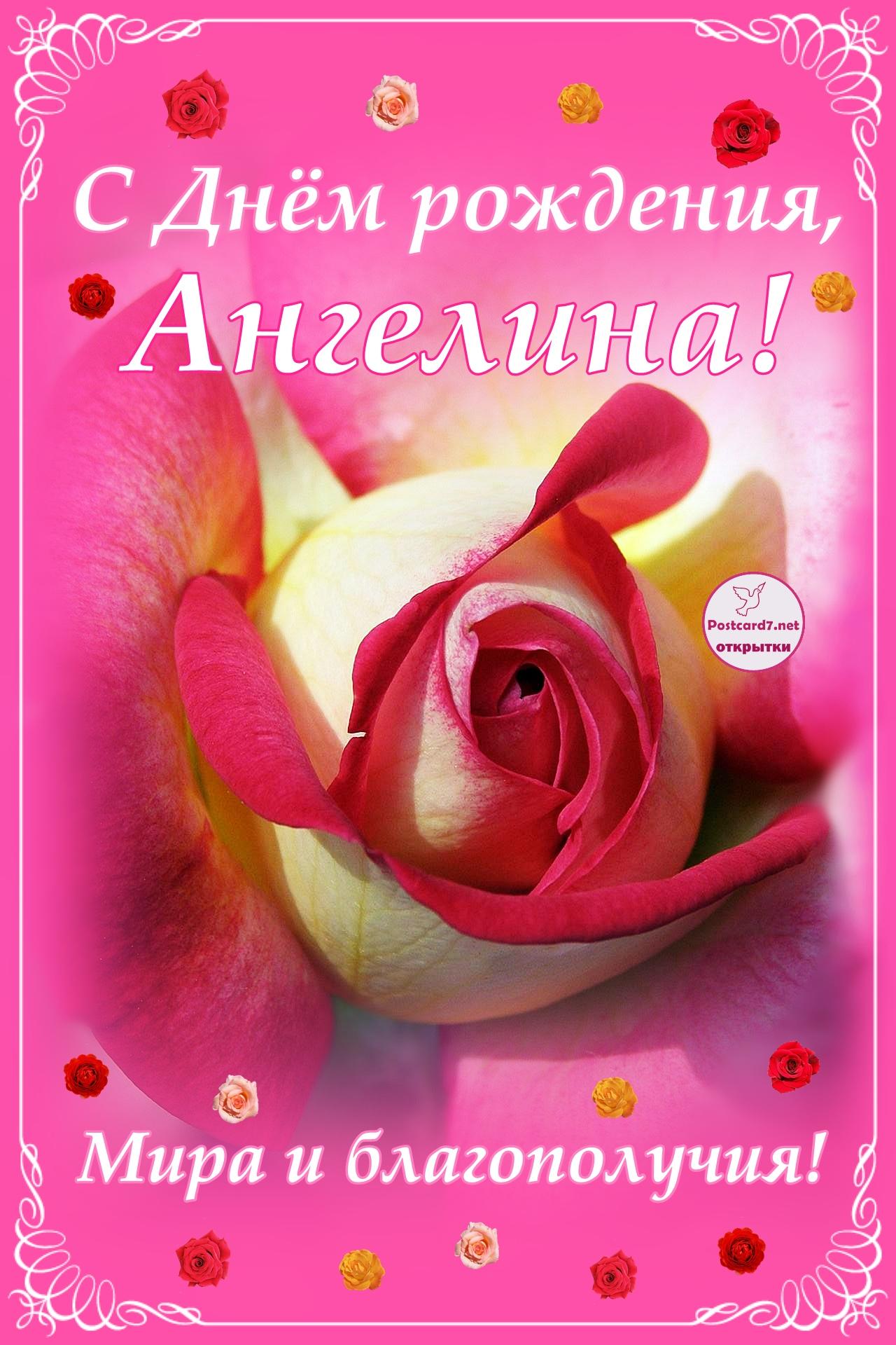 С Днём рождения, Ангелина; открытка с розой