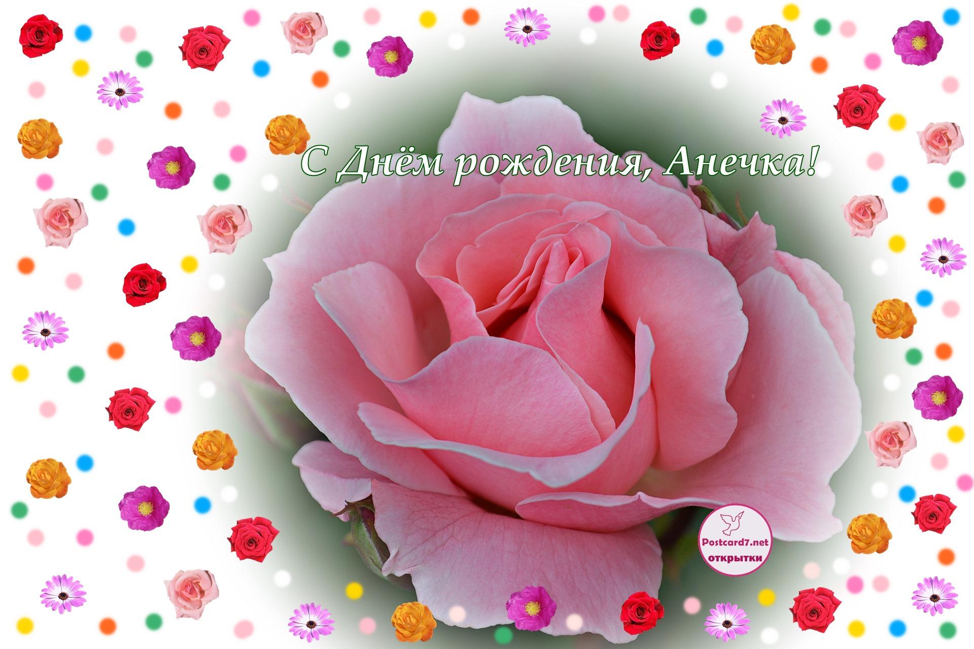 Роза в цветочной рамочке. Открытка в День рождения для Анечки.