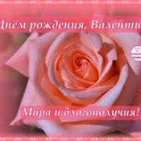 Открытка с Днём рождения Валентине, роза