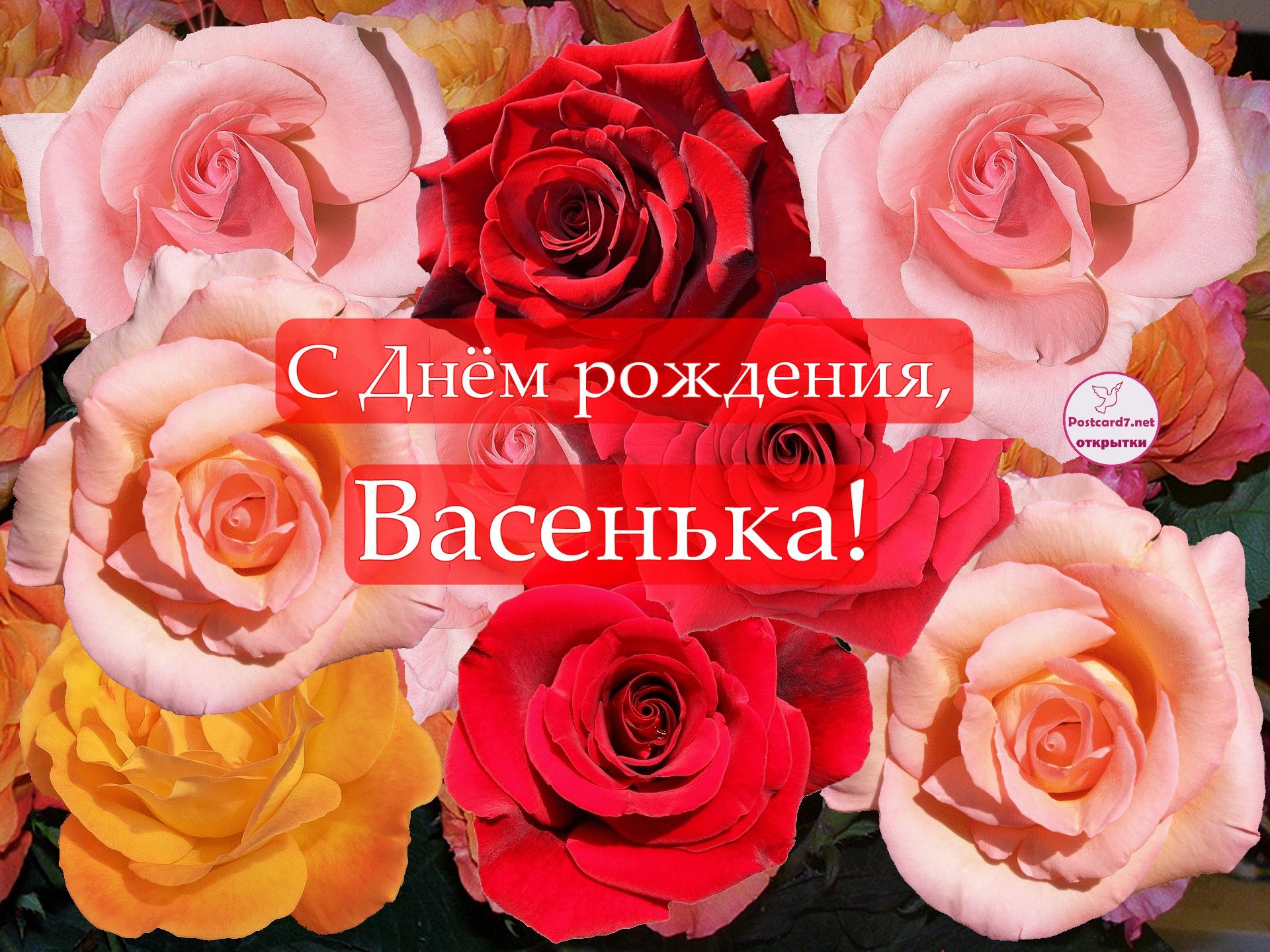 С Днём рождения, Васенька; открытка с розами