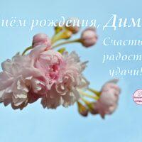 С Днём рождения, Дима; открытка с цветущей весенней веточкой