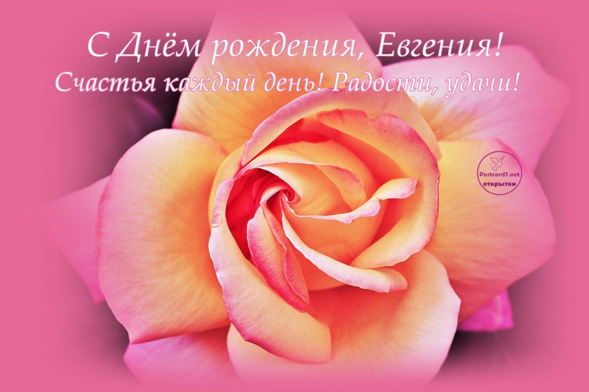 Женечке открытка