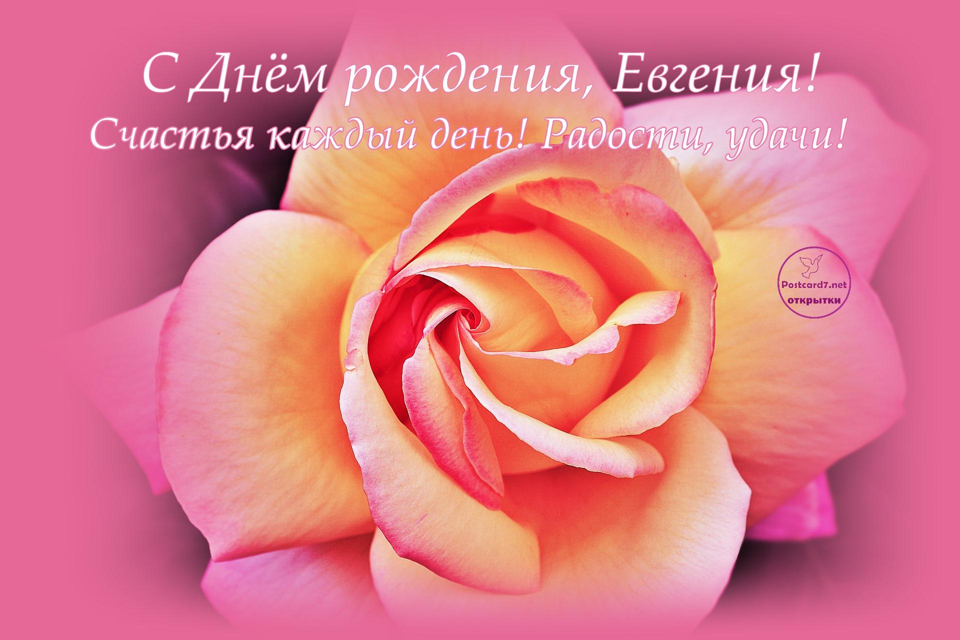 Красивая открытка с днем рождения женечке, поздравления