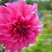 С Днём рождения, Евгения