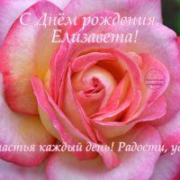 С Днём рождения, Елизавета, открытка с розой