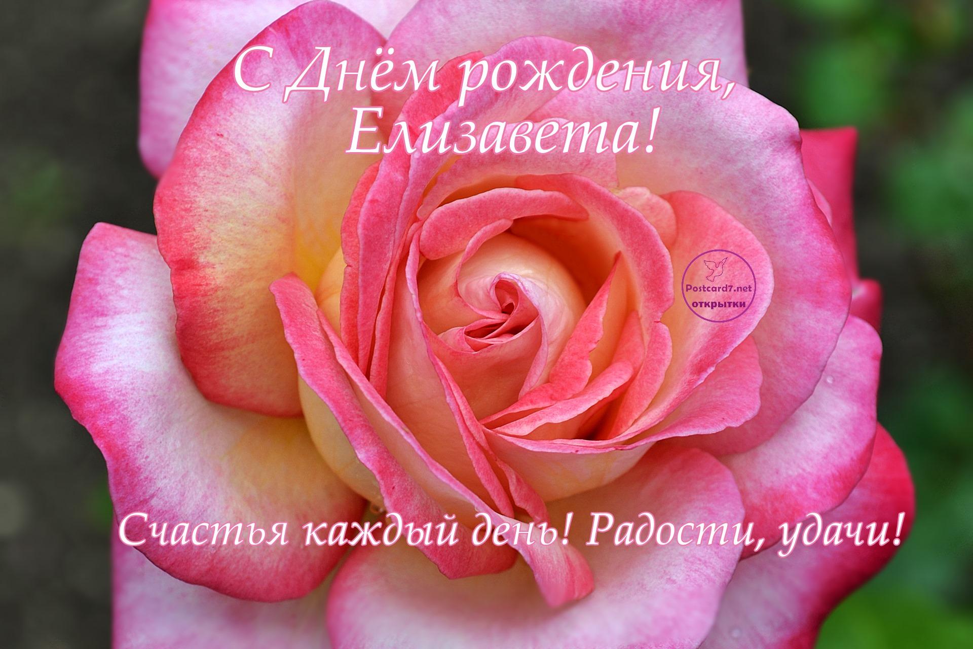 Поздравления с днем рождения елизавета картинки, февраля