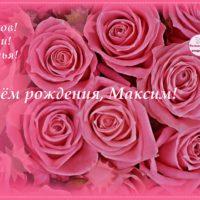 С Днём рождения, Максим, розы