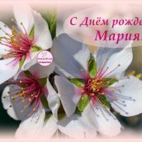 С Днём рождения, Мария, открытка