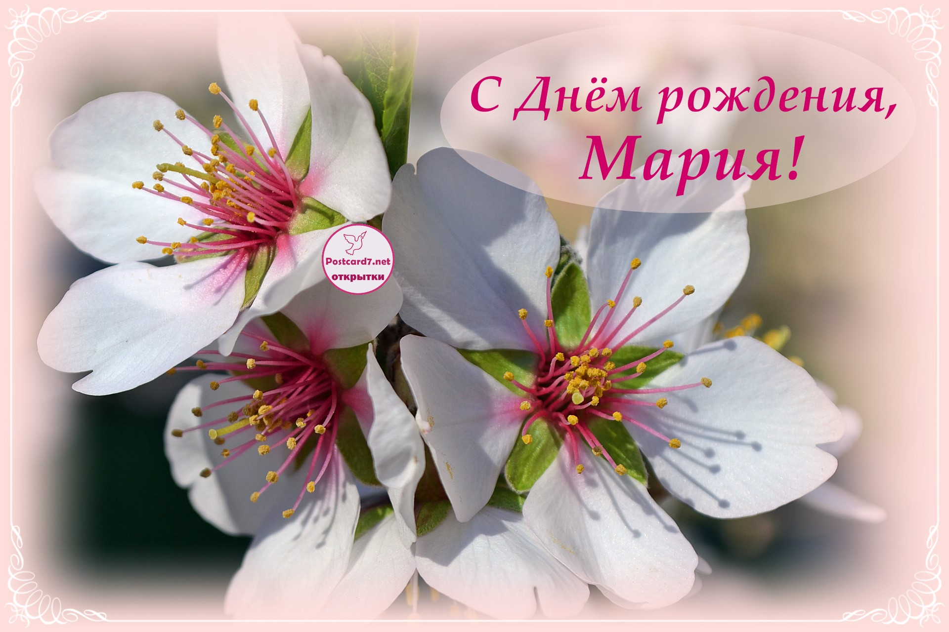 Картинки с поздравлением с днем рождения марии, днем