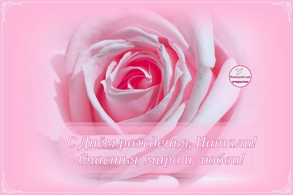 С Днём рожденья, Натали, открытка, роза