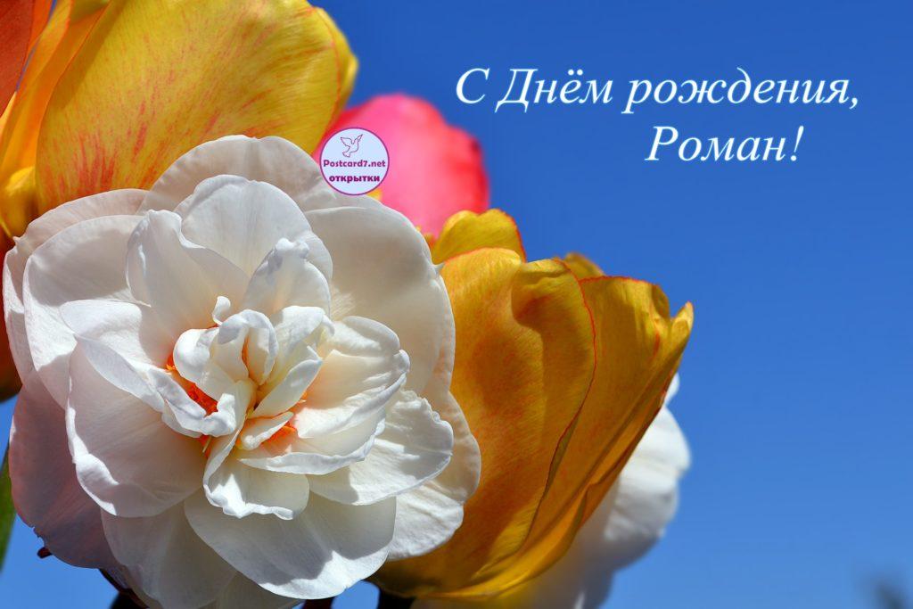 С Днём рождения, Роман, открытка