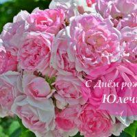 С Днём рождения, Юлечка, открытка с розами
