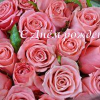 С Днём рождения, букет розовых роз, открытка, очень красивая открытка ко дню рождения
