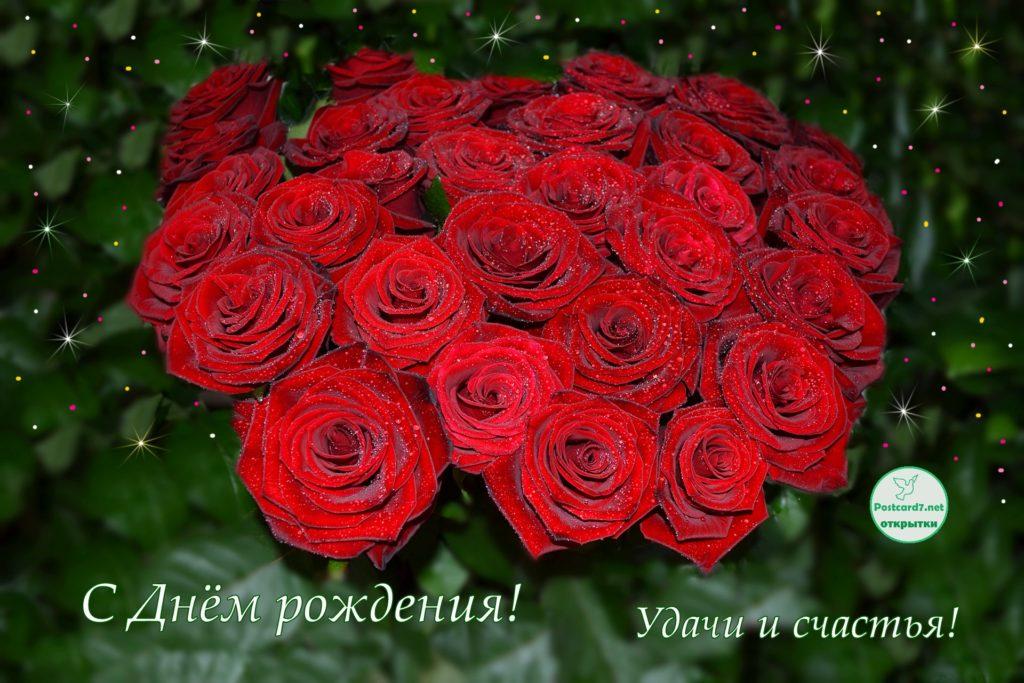 С Днём рождения, букет красных роз