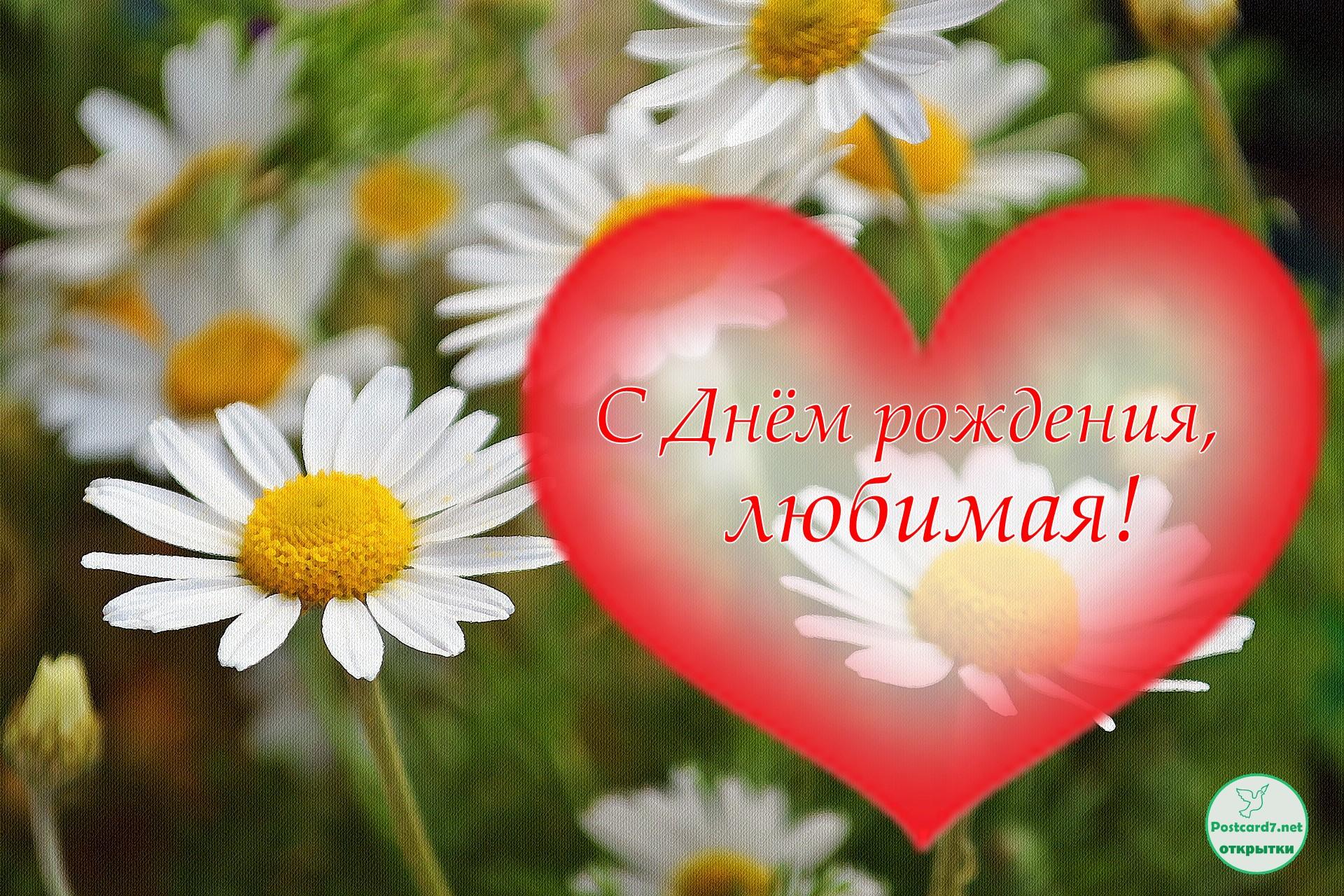 С Днём рождения, любимая! Ромашки и сердечко