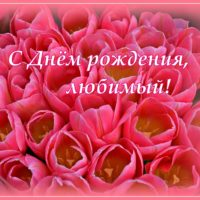 С Днём рождения, любимый; открытка с тюльпанами