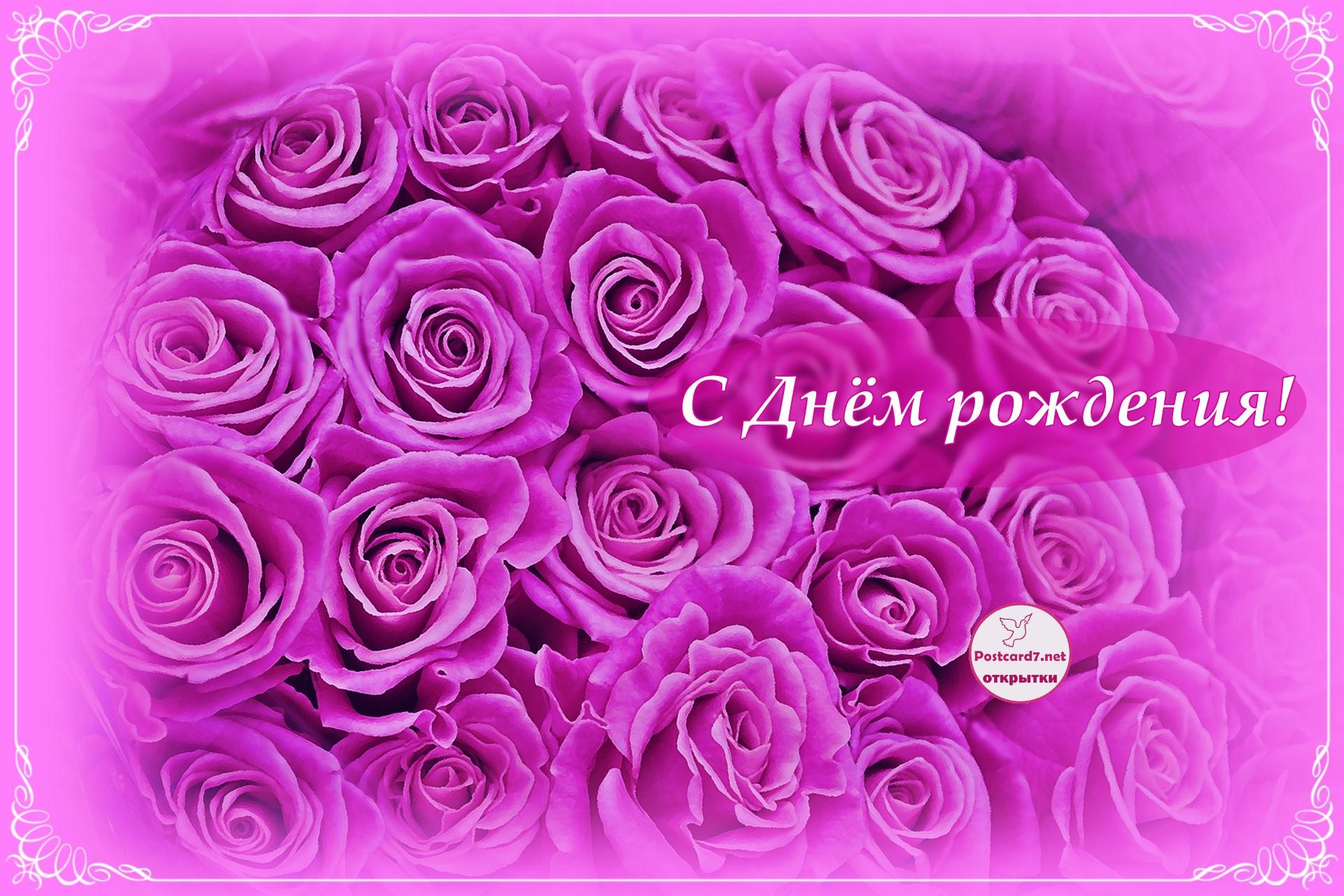Открытка с с букетом сиреневых роз. С Днём рождения!