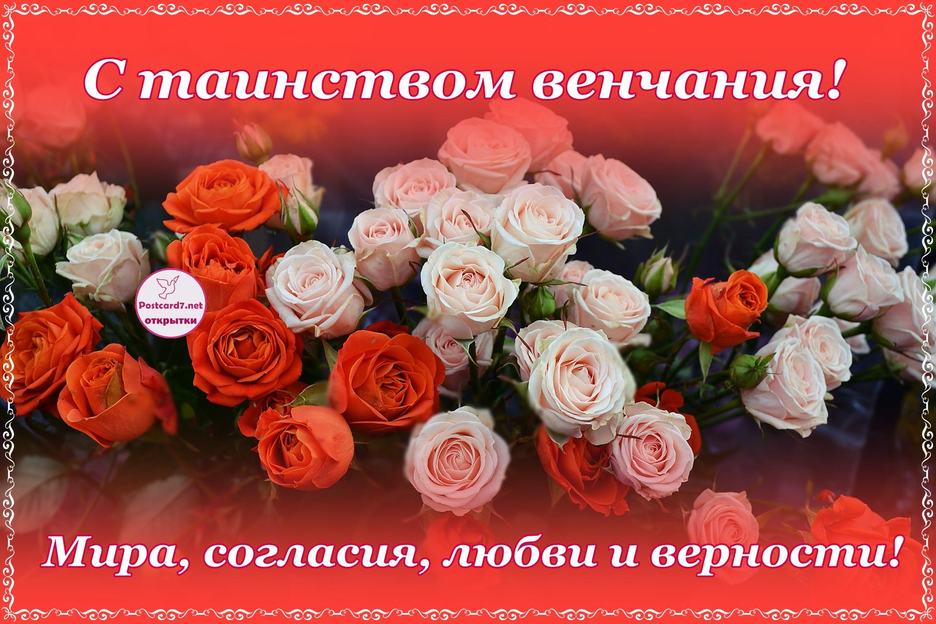 Букет светло-розовых и алых роз, с венчанием