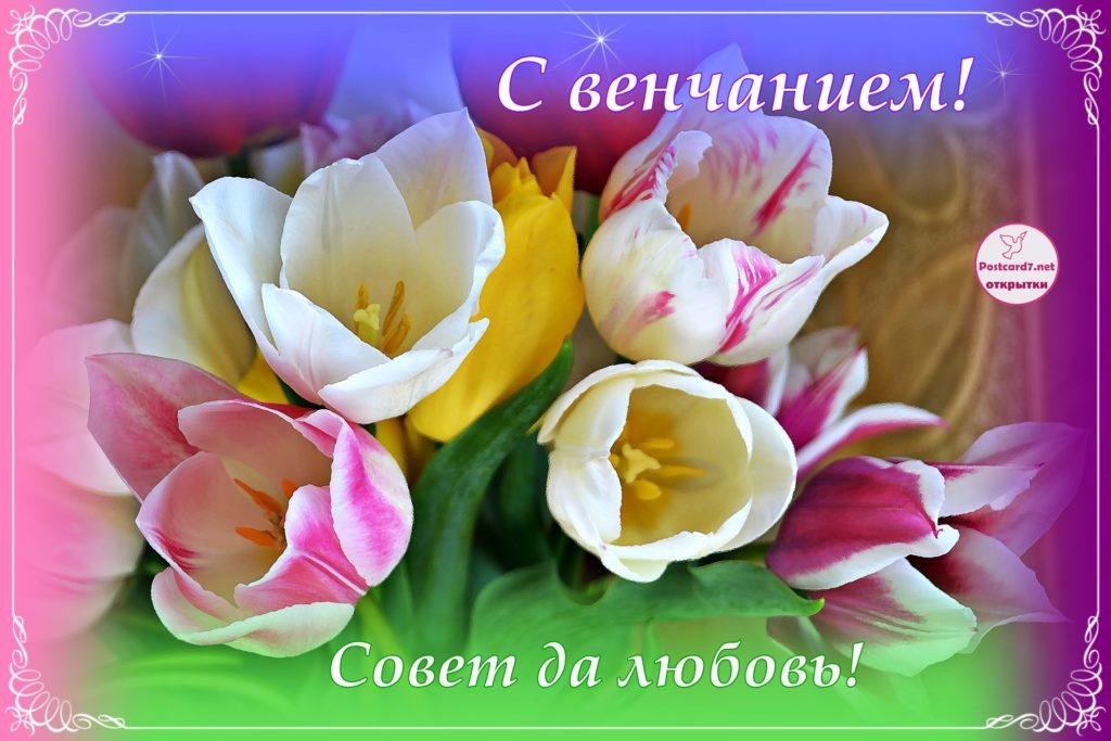 С венчанием, открытка с тюльпанами