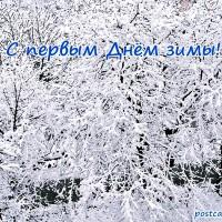 С первым Днём зимы, открытка, деревья в снегу